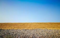 Sommar i fälten Arkivbild