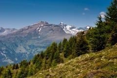 Sommar i fjällängarna i Österrike (Kaernten) Fotografering för Bildbyråer