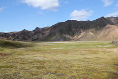 Sommar i Island Arkivbilder