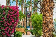 Sommar i La Quinta, CA royaltyfri foto