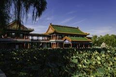 Sommar i Peking Longtan parkerar Arkivfoton