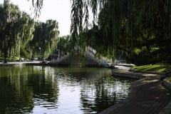 Sommar i Peking Longtan parkerar Arkivbilder