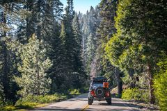 Sommar i sequoianationalparken, Kalifornien, USA Bilturen på enväg bil på naturligt USA parkerar Arkivfoto