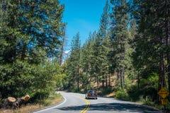 Sommar i sequoianationalparken, Kalifornien, USA Skoghuvudväg till och med reserven Royaltyfria Bilder