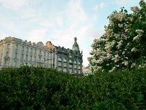 Sommar i St Petersburg Sikten av lila buskar och huset av Zinger på Nevsky prospekterar i centret Blomma den lila busken arkivfoto