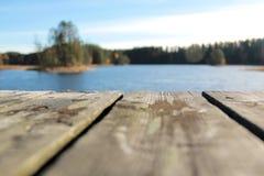 Sommar lake Fotografering för Bildbyråer