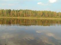 Sommar och flod Arkivbild
