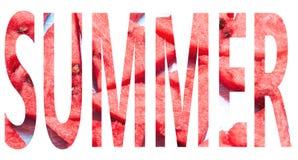 Sommar-ord med vattenmelontextur royaltyfri bild