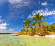 Sommar på ett tropiskt paradis i Florida tangenter Royaltyfri Fotografi