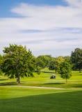 Sommar på golfbana royaltyfri fotografi