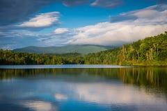 Sommar på Julian Price Lake Royaltyfria Foton