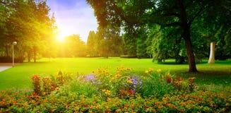Sommar parkerar med blomsterrabatter royaltyfri bild
