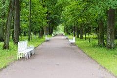 Sommar parkerar med vita bänkar och vandringsled Arkivbild