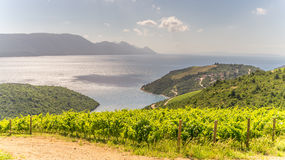 Sommar Scenics i Dalmatia Arkivbild
