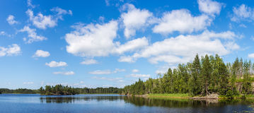 Sommar sjö Royaltyfria Bilder