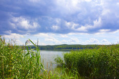 Sommar sjö på en solig dag Skogen är långväga den härliga bluen clouds skysoluppgång Arkivbilder
