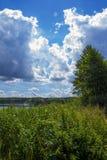 Sommar sjö på en solig dag Skogen är långväga den härliga bluen clouds skysoluppgång Royaltyfria Foton