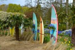 Sommar surfar Royaltyfria Bilder