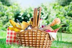 Sommar Tid för mat för inställning för picknickWattled korg Royaltyfri Bild