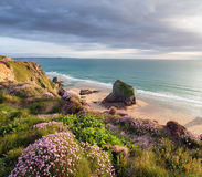 Sommar Tid i Cornwall Royaltyfria Bilder
