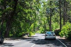 Sommar turnerar över naturligt USA parkerar Turist- bil på observationsdäcket i den Yosemite nationalparken arkivfoto