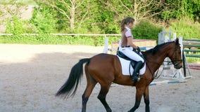 Sommar utomhus, flickaryttare, jockeyridning på en fullblods- härlig brun hingst, häst, på utbildningsjordningen arkivfilmer