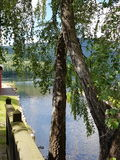 Sommar vid sjön Royaltyfria Foton