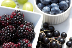 Sommarbär - blåbär, björnbär, svart vinbär och krusbär i solljus Royaltyfri Fotografi