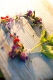 Sommarbär- och blommaram för text Arkivbilder