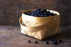 Sommarbärblåbär i korg Fotografering för Bildbyråer