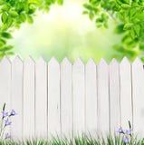 Sommarbakgrund med staketet Arkivbild