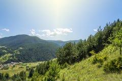Sommarberg landskap Arkivfoto