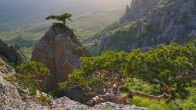 Sommarbergdal i Krim stock video