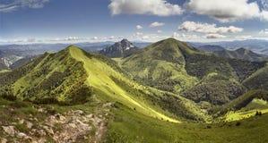 Sommarbergkant i Mala Fatra National Park, Slovakien Royaltyfria Foton