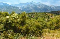 Sommarberglandskap (Grekland) Arkivbilder