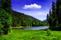 Sommarberglandskap, sjö i bergen gröna träd in Arkivbild