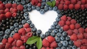 Sommarblåbär, hallon och detox för vinbärhjärtaram som isoleras på vit bakgrund Förälskelsebär gränsar design lager videofilmer