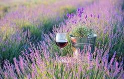 Sommarblommor och vin royaltyfri fotografi