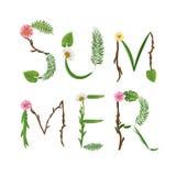 Sommarbokstäver Tropisk palmbladbakgrund Arkivbild