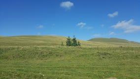 Sommardag i bergen Royaltyfria Foton