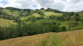 Sommardag i bergen Royaltyfri Bild