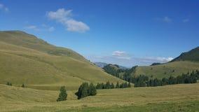 Sommardag i bergen Royaltyfri Fotografi