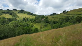 Sommardag i bergen Arkivfoto