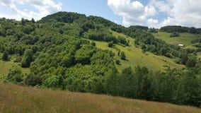 Sommardag i bergen Arkivbild