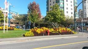 Sommardag i Vancouver Arkivbild