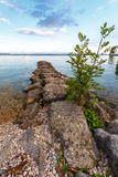 Sommardag vid en sjö Royaltyfria Foton