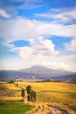 Sommareftermiddagen går på den berömda Tuscan vägen Arkivfoton