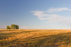 Sommaren landskap royaltyfria foton