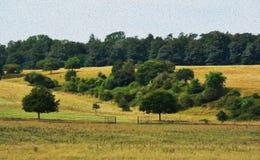 SOMMAREN landskap Royaltyfri Foto