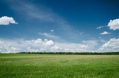 SOMMAREN landskap Arkivbild